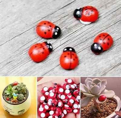 New 5Pcs DIY Craft Miniature Garden Lawn Ornaments Insect Beetle Landscape Yard