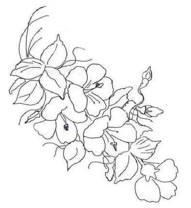 Pintura em Tecido Passo a Passo: Riscos de flores
