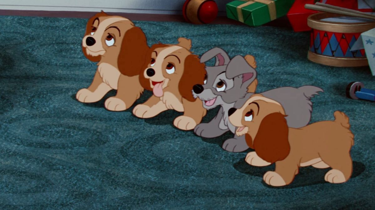 10 Things You Didn't Know About Lady and the Tramp