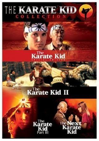 Karate kid 1984 torrent french
