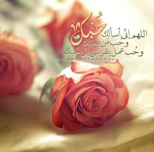 Pin By Toota On لحن الروح Islamic Pictures Islamic Calligraphy Rose