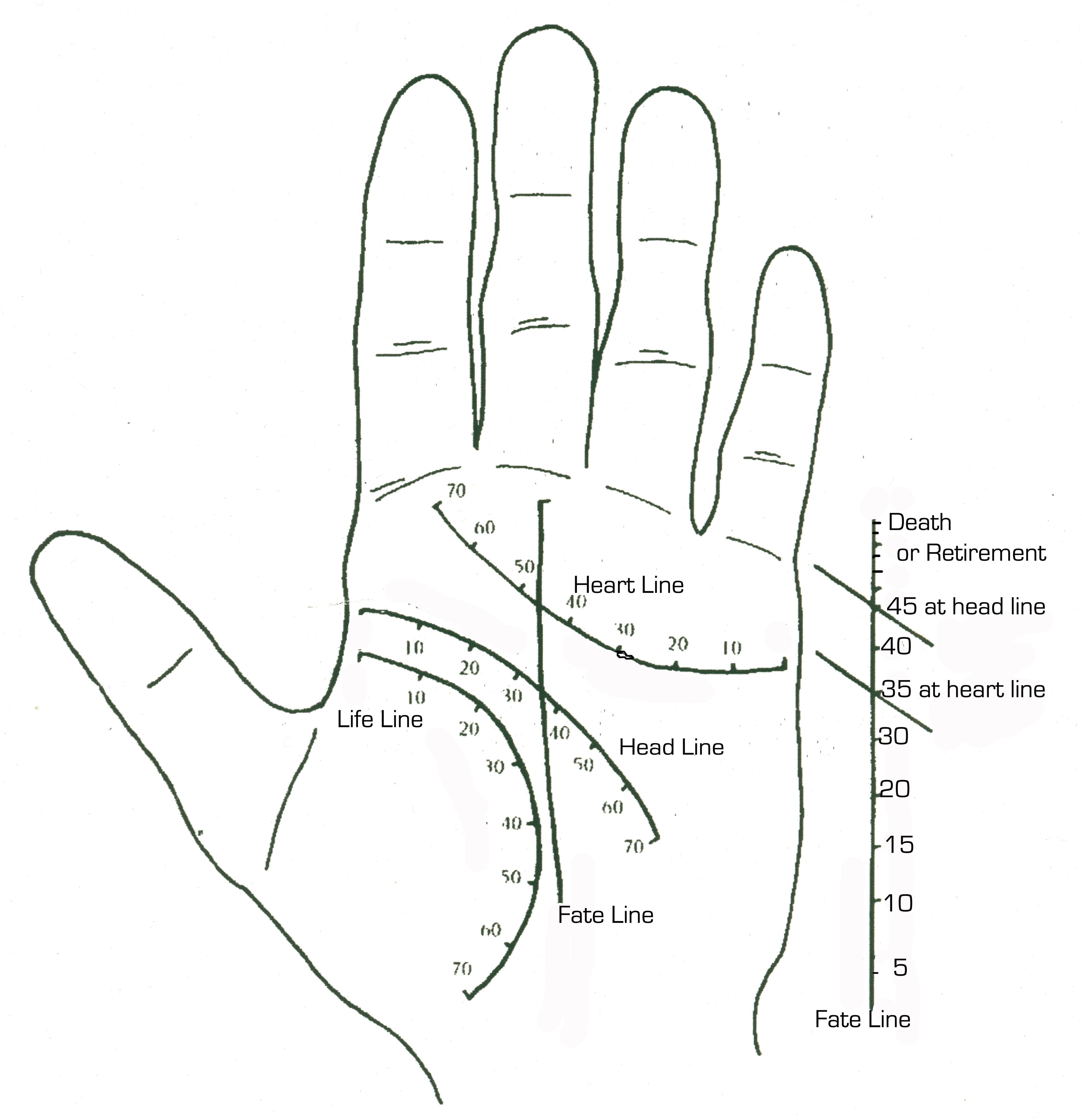 Palmistry: a selection of sites