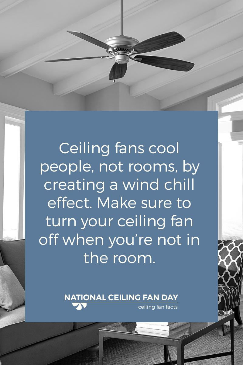 Did you know ceiling fans are designed to cool people not rooms ceiling fans and lighting stores online mozeypictures Choice Image