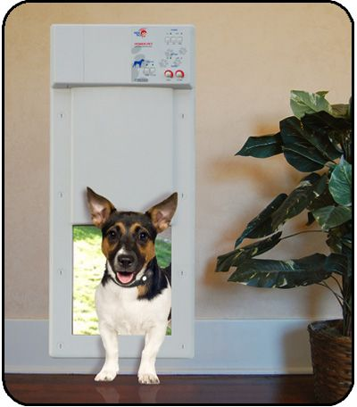 ... Perfect Automatic Pet Door For Your Small Dog Or Cat Puppy Love ... & Small Dog Door Image collections - doors design modern
