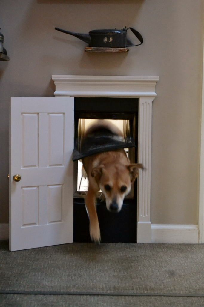 Dress Up Your Doggie Door Diy Dog Misc Pinterest Doggies