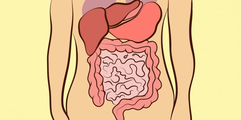 The Location Of Your Bellyache Indicates The Cause Be Careful When