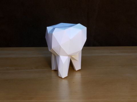 Facetted Molar Tooth Geometric Pinterest Paper Paper Design