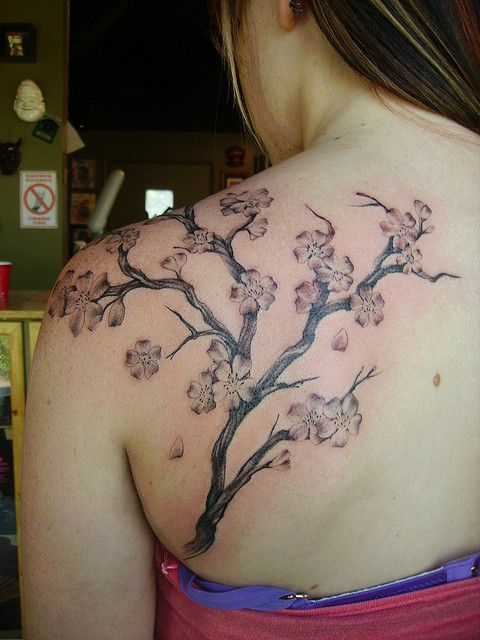 Pin By Victoria Mauro On I Met A Girl Who Kept Tattoos For Homes That She Had Loved Cherry Blossom Tattoo Cherry Blossom Tree Tattoo Tree Tattoo Black