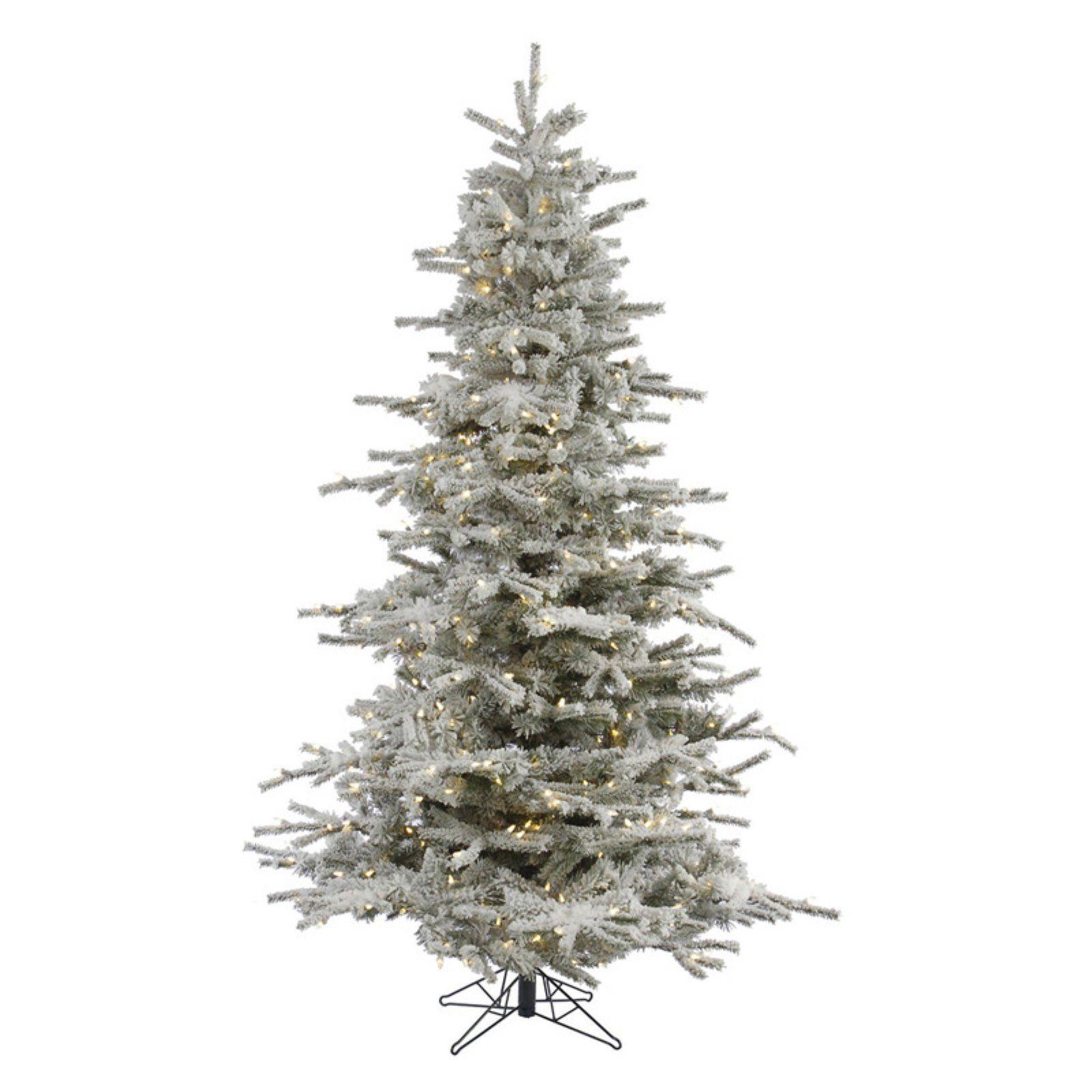 new arrival 2bd1d e892e Vickerman 12 ft. Flocked Sierra Fir Pre-lit Christmas Tree ...