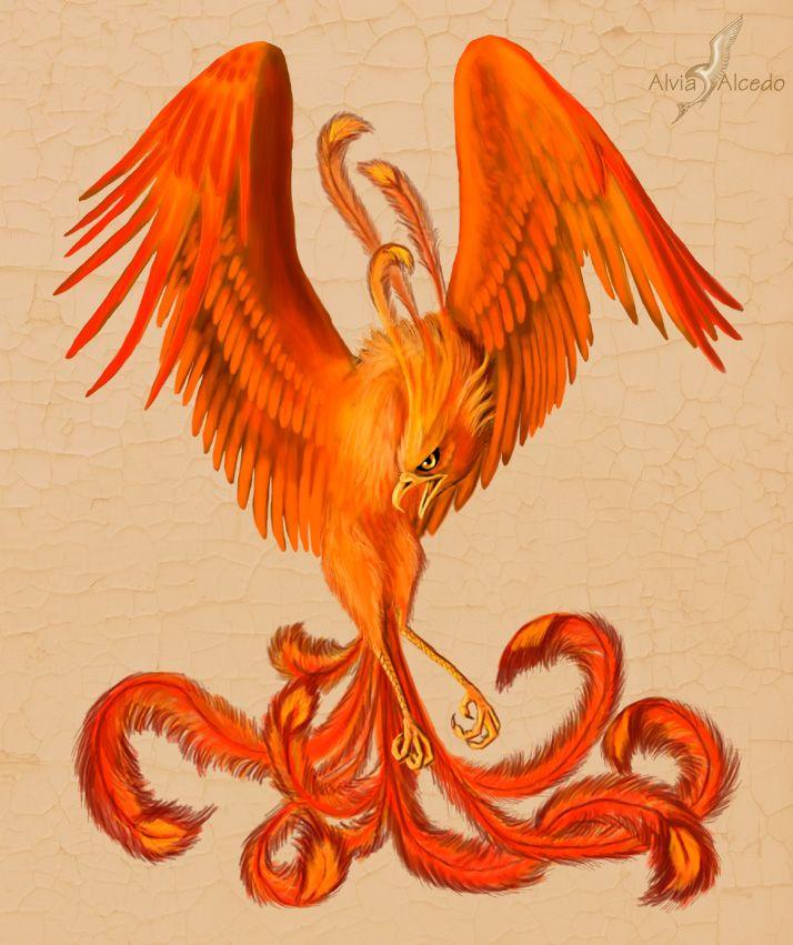 Asian Dragon Tattoo Sketch By Marinaalex On Deviantart: Red Phoenix By AlviaAlcedo.deviantart.com On @deviantART