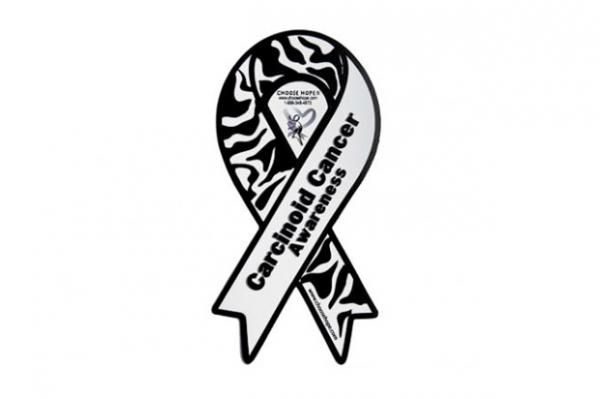 CARCINOID CANCER AWARENESS MINI MAGNET