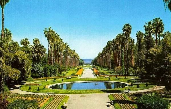 Jardin D Essai Algiers Algeria Places Around The World
