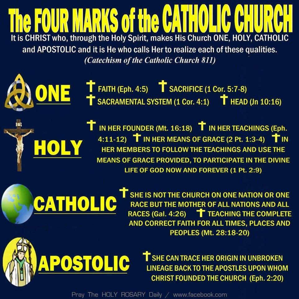 Pin By Verses Verses On Catholic Catholic Faith Catechism Catholic