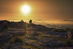 the fog por alex mertzanis