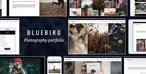 Bluebird V Design For Professional Photographers Blogger - Blogger photography templates professional