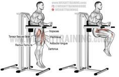 Captain S Chair Leg Raise Exercise Guide And Video Weight Training Guide Leg Raise Exercise Chair Legs Fun Workouts