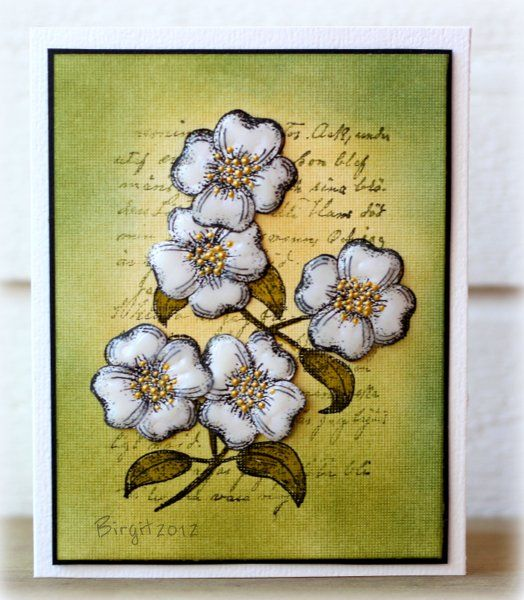 Here´s my inspiration from Susan´s lovely gallery; http://www.splitcoaststampers.com/gallery/photo/2192292?&cat=500&ppuser=179658 I changed colors and image. Used this Dogwood stamp from Alota Rubberstamp; http://www.alotarubberstamps.com/ars2011/viewItemDetail.asp?pid=5572 Cut out two more flowers and placed them on 3D foams. Added some Glossy Accent and Liquid Pearls.