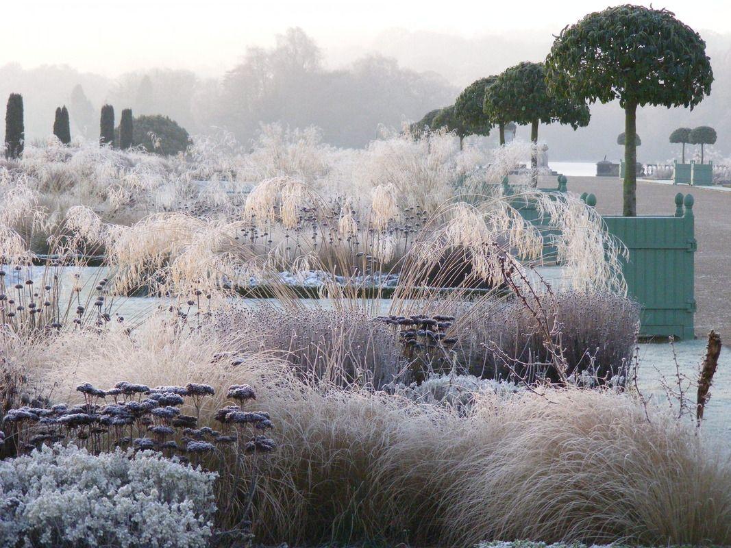 trentham tom stuart smith winter garden pinterest toms