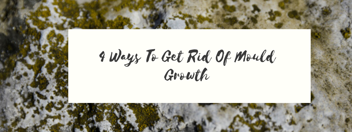 4 Ways To Get Rid Of Mould Growth in 2020 Get rid of