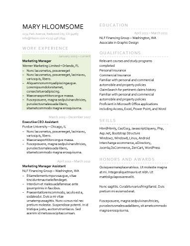 Split Page Resumes/Job Resume templates, Resume template free
