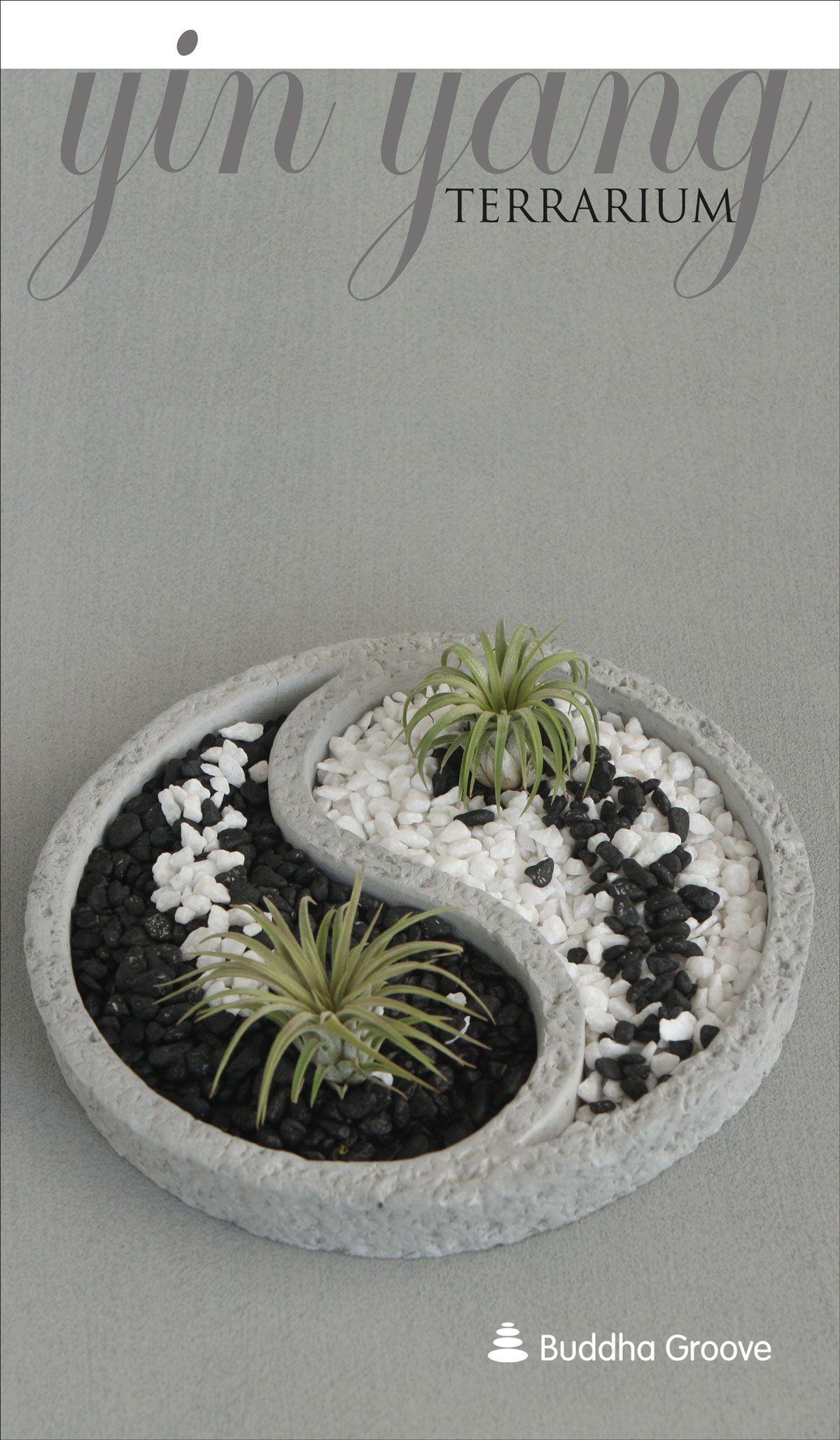 Yin Yang Air Plant Zen Terrarium Indoor Vegetable Gardening Air