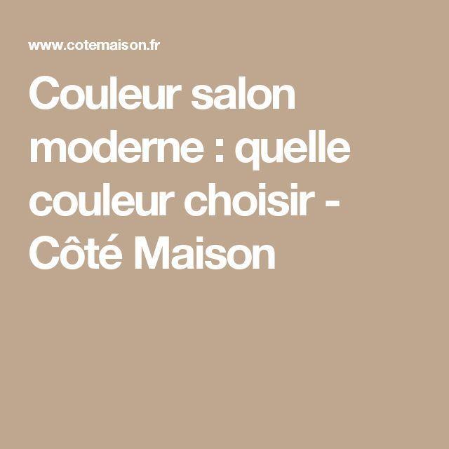 nice Déco Salon - awesome Déco Salon - Couleur salon moderne
