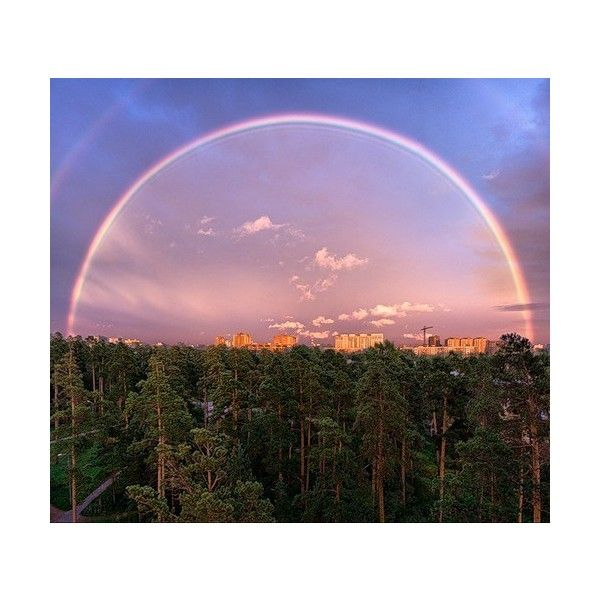 nowayelse «rainbow wow!» Яндекс.Фотках city background бор 500x445... ❤ liked on Polyvore featuring backgrounds, fondos, blue, flowers and pink