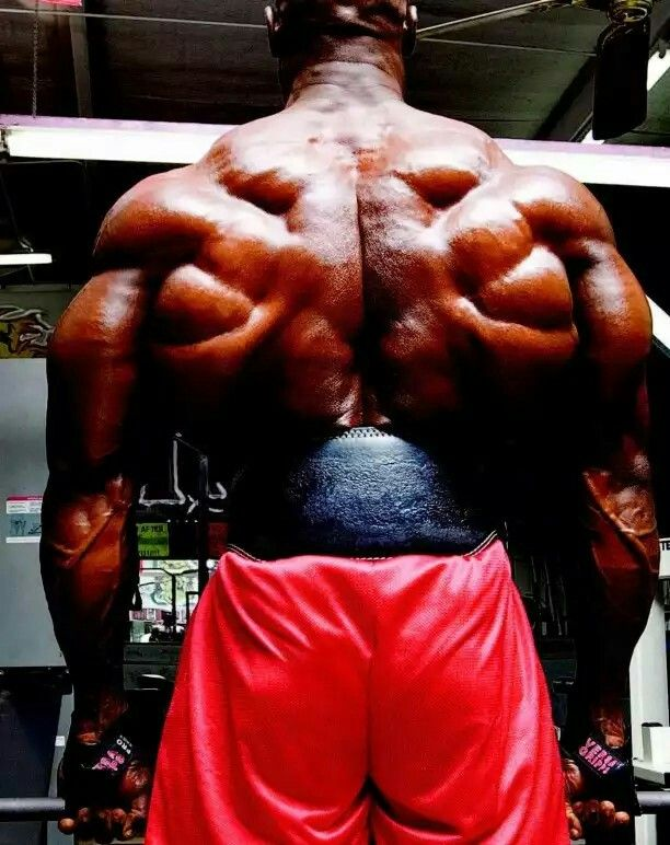 Explore Back Workouts Muscle Men And More