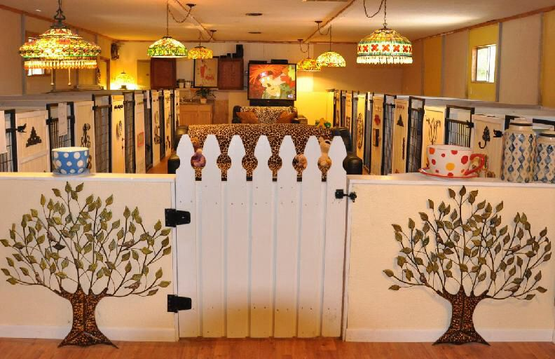 Country Cottage Pet Resort Boarding Kennel Dog Boarding Facility Dog Boarding Kennels Dog Boarding Ideas