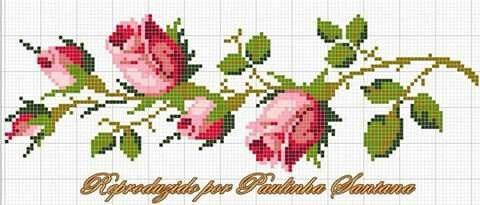 Galho rosas
