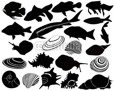 Fish and shellfish stencil inspiration-- will need some adjustment