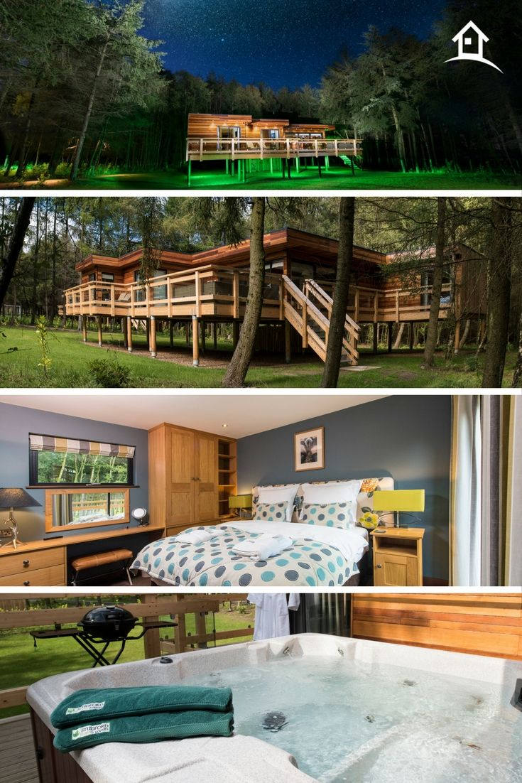 Studford Luxury Lodges Luxe Treehouses With Hot Tubs And Saunas Luxury Lodge Tree House Lodges