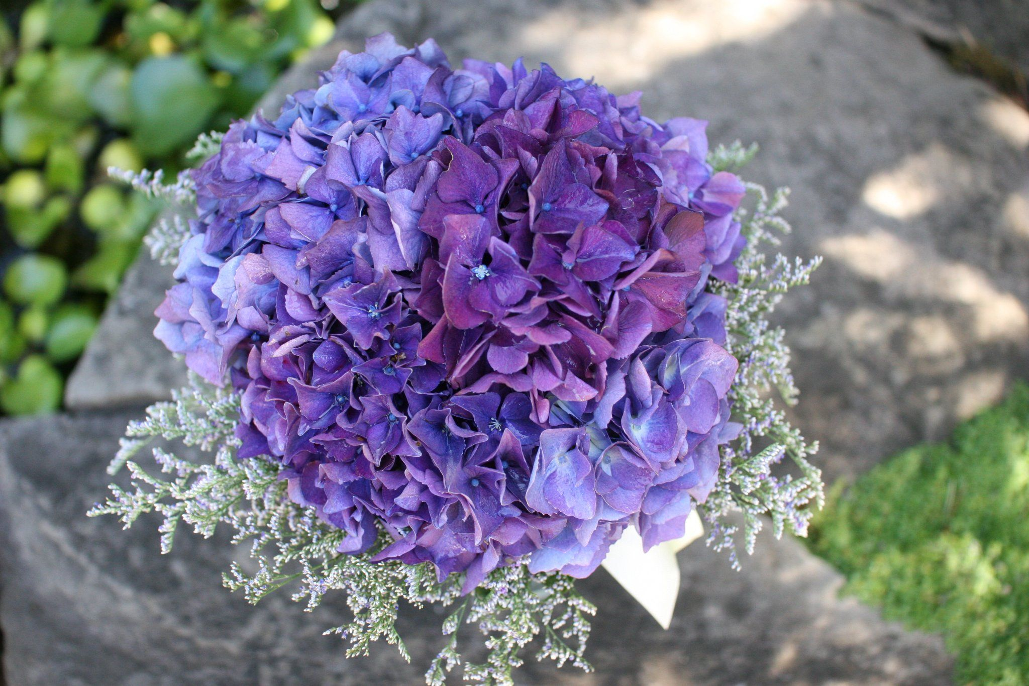 Purple Hydrangea Wedding Bouquets