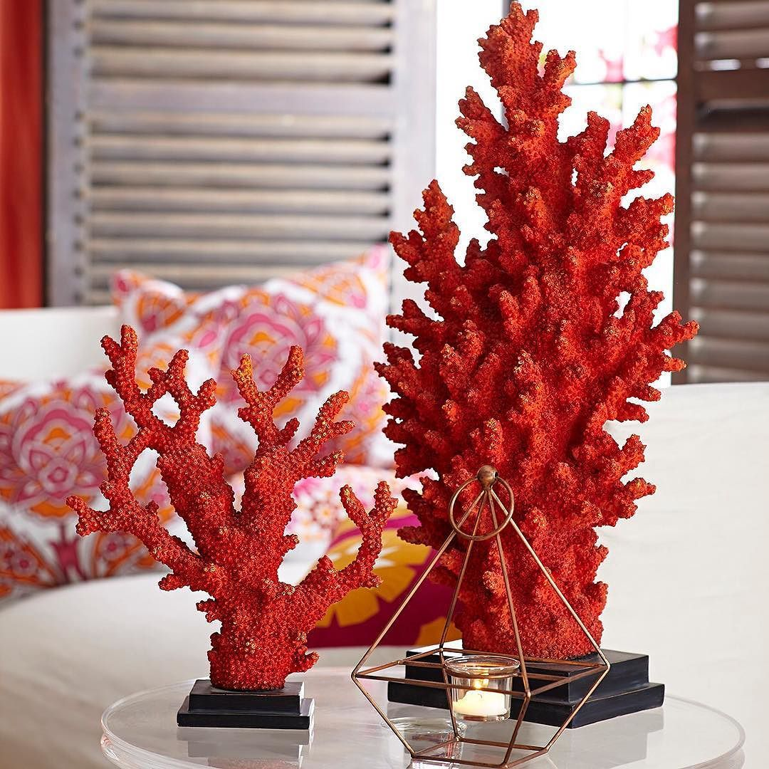 Rich With Color, These Vibrantly Red Precious Coral