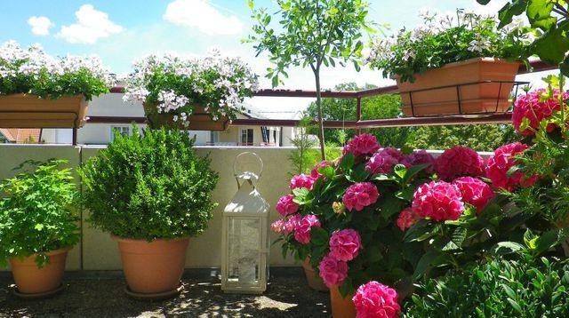 Balcon am nagement d coration balcon fleuri en ville balcons fleuri et fleurs balcon - Terrasse et jardin fleuri paris ...