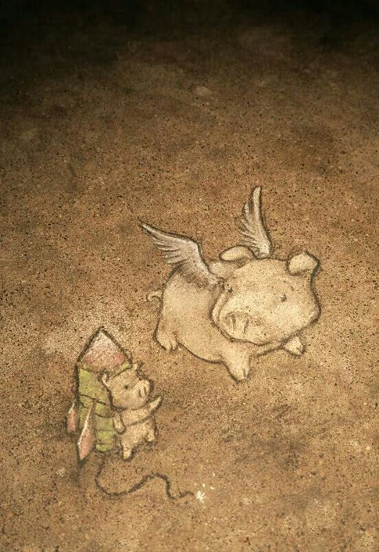 Pigs can fly... or at least try #DavidZinn