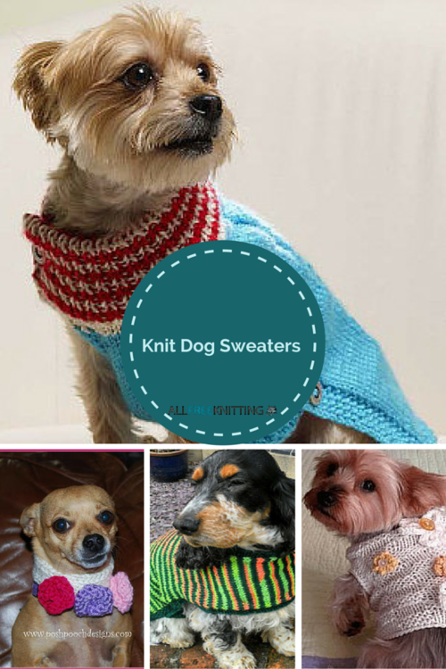 Knitting For Pets 22 Knit Dog Sweaters Easy Knit Pinterest