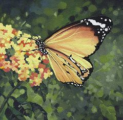 Insect Paintings - Monarch Butterfly  by Natasha Denger