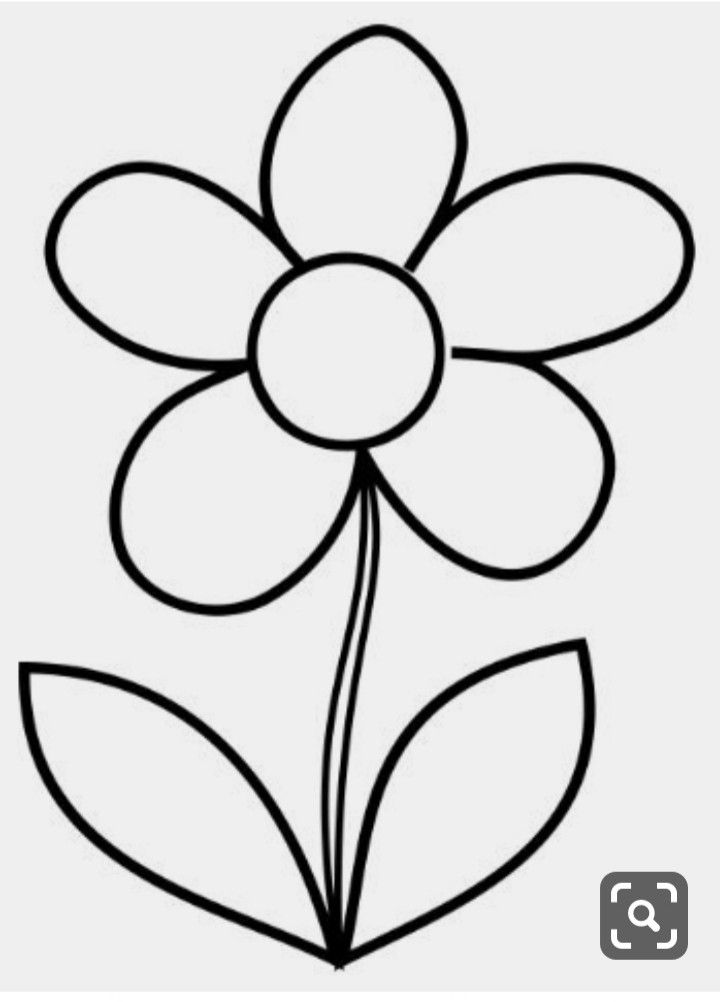 Coloring Page Template Printing Flower Coloring Pages Coloring Pages Floral Illustrations