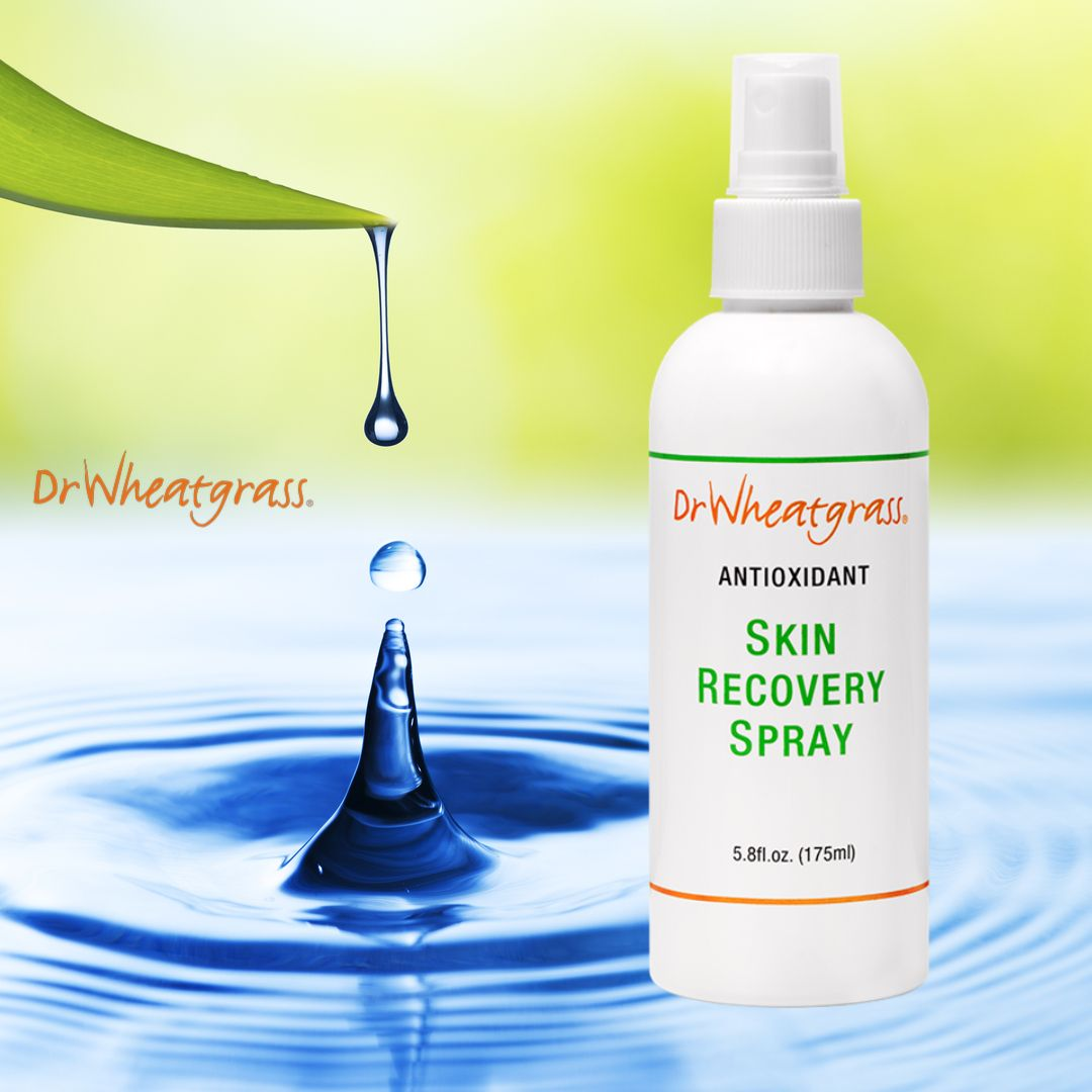 Dr Wheatgrass Antioxidant Skin Recovery Spray The Most Significant