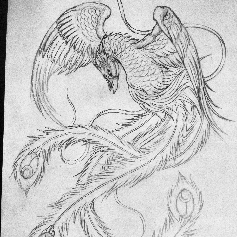 феникс рисунки для тату много семантических превращений