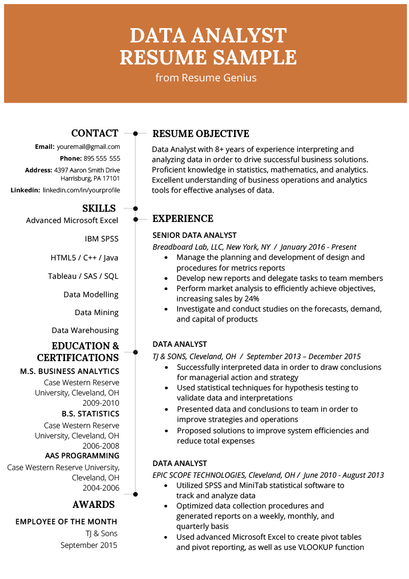 Data Analyst Resume Example & Writing Guide Business