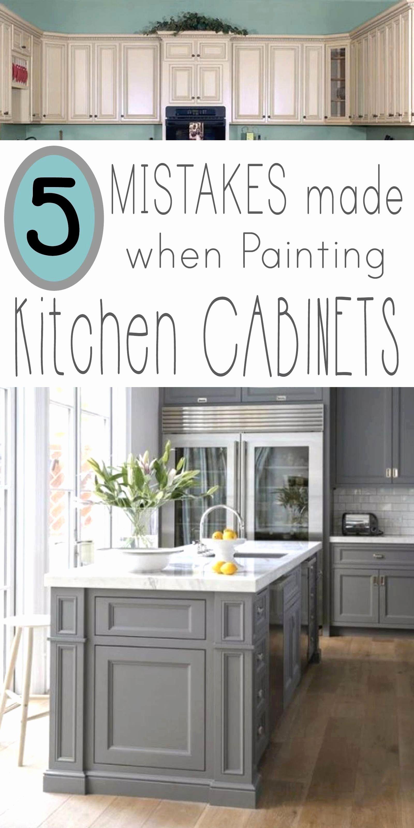 Sleek Kitchen Remodel June 2018 Painting Kitchen Cabinets Kitchen Redo Kitchen Remodel