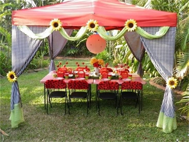 Spoilt Silly Parties Townsville LADYBUG PICNIC Lady bug themed