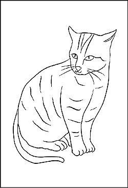 Malvorlagen Und Ausmalbilder Von Haustieren Zum Ausdrucken Haustiere Katzen Zeichnungen Haustier Adoption