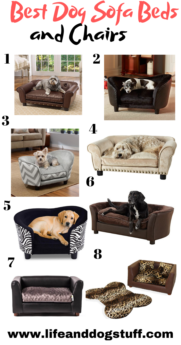 8 Best Dog Sofa Beds And Couches Dog Sofa Bed Dog Sofa Dog Bed