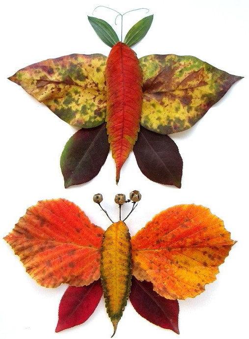 Imágenes Creativas: 31 foto ideas para trabajar con hojas secas ...
