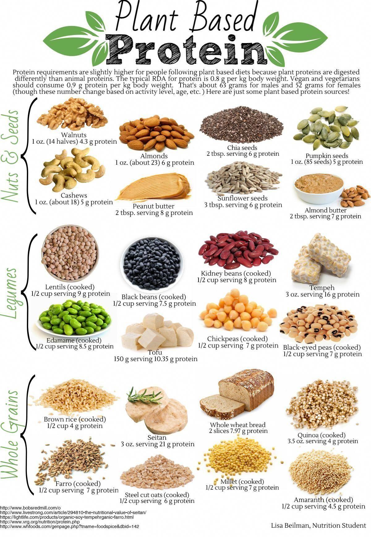 Proteinreiche Ernährung