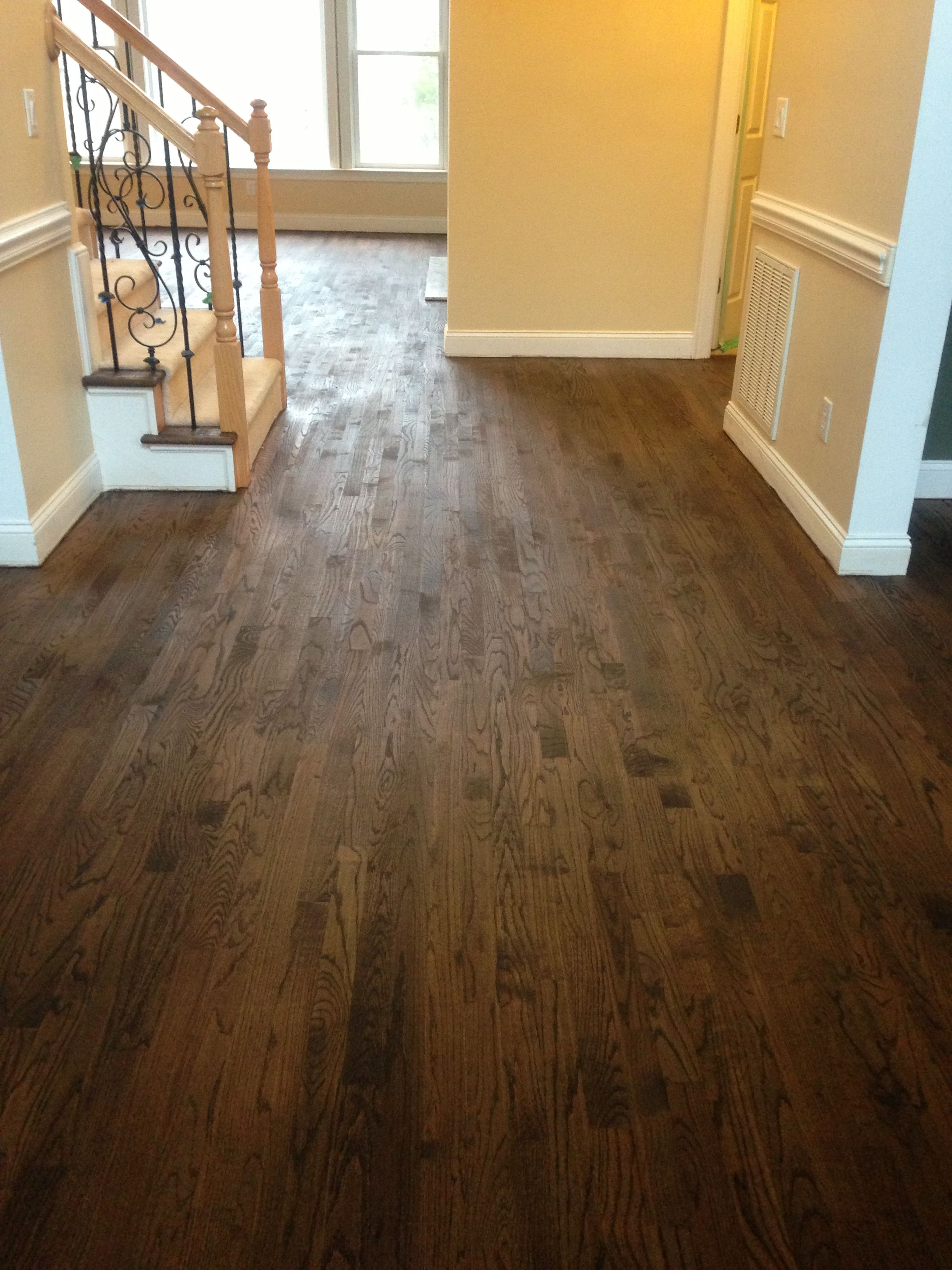 Sanded and stained red oak hardwood floors before polyurethane semi gloss mix of Minwax Dark
