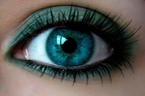 27 Sets Of Free Eye Brushes For Photoshop (eyelash,iris,eyeshadow,eye line).